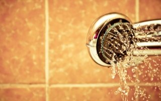 Legionella in Water Supplies