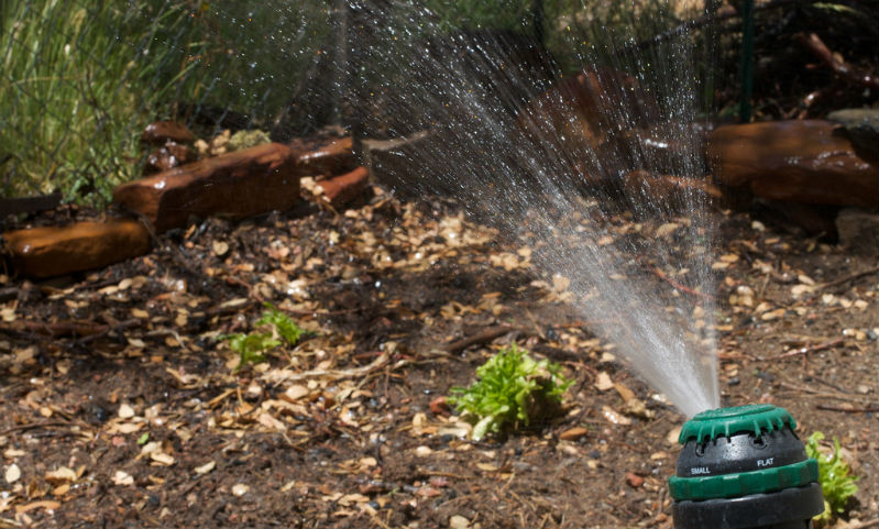 Garden Irrigtation Borehole