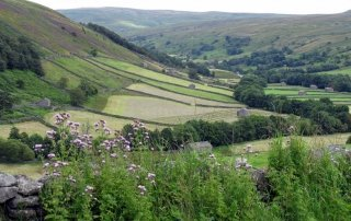 Farming in Yorkshire