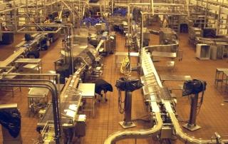 Food Production Borehole